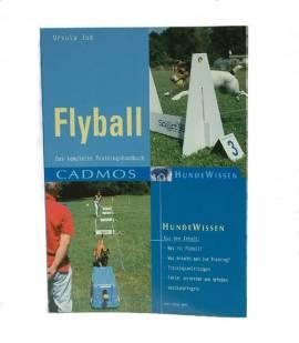 Flyball - Bild vergrößern